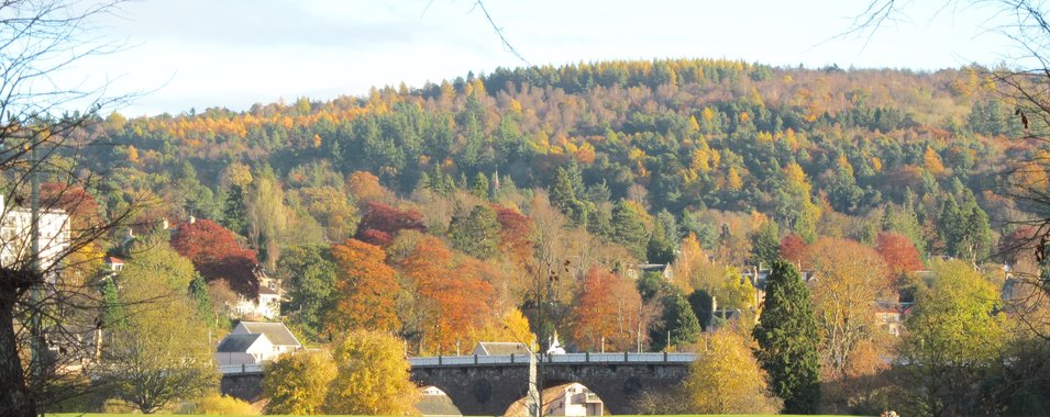 Perthshire's Old Bridge from The North Inch in Autumn Colours